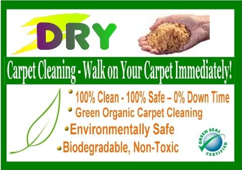 dry carpet cleaning sunderland