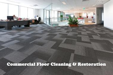 Carpet cleaners in Sunderland